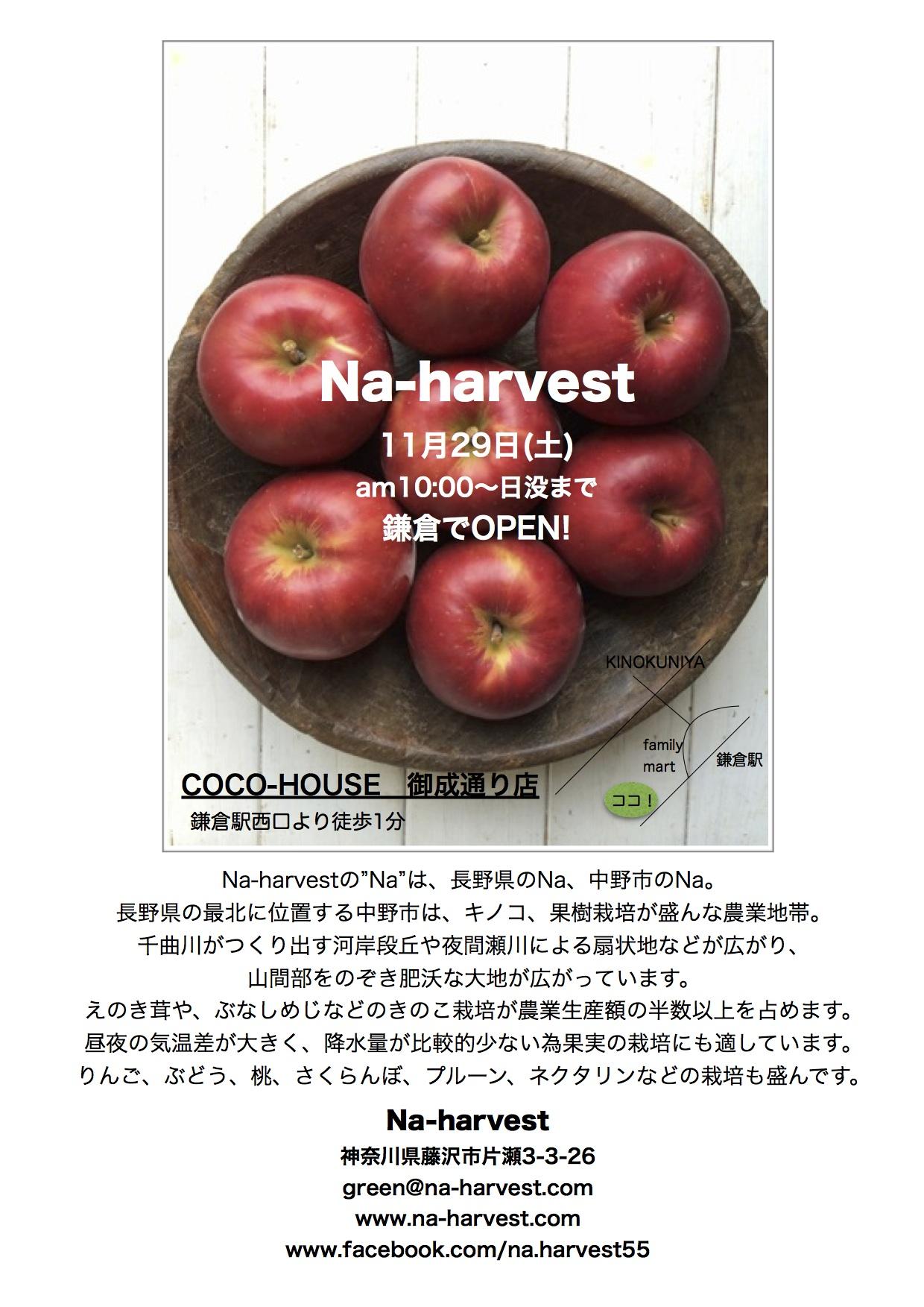 ハーベスト鎌倉出店広告